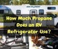 How Much Propane Does an RV Refrigerator Use?