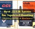 Best .22 LR Ammo for Squirrel Hunting (Buying Guide & Reviews)