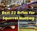 5 Best 22 Rifles for Squirrel Hunting (Beginners' Ultimate Guide)